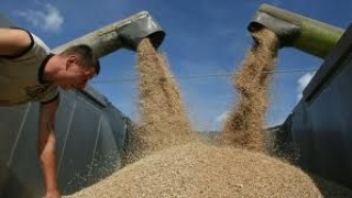 Central Asia grain markets: Russia and Kazakhstan redirecting export