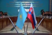 Kazakhstan, Slovakia discuss investment cooperation