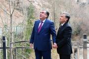 The transformation of the Uzbek-Tajik relationship